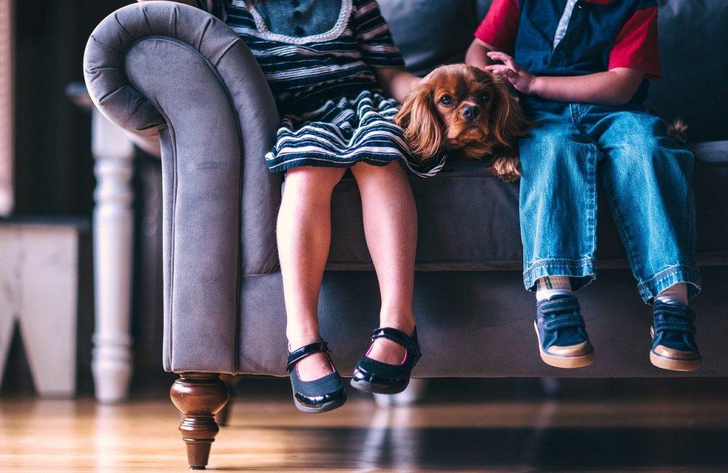 bambini sul divano  - movies