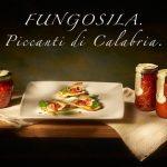 Prodotti Fungosila