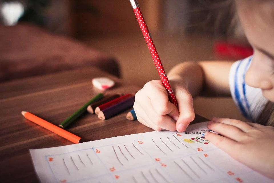 Scuole in azienda - bambino con matita rossa