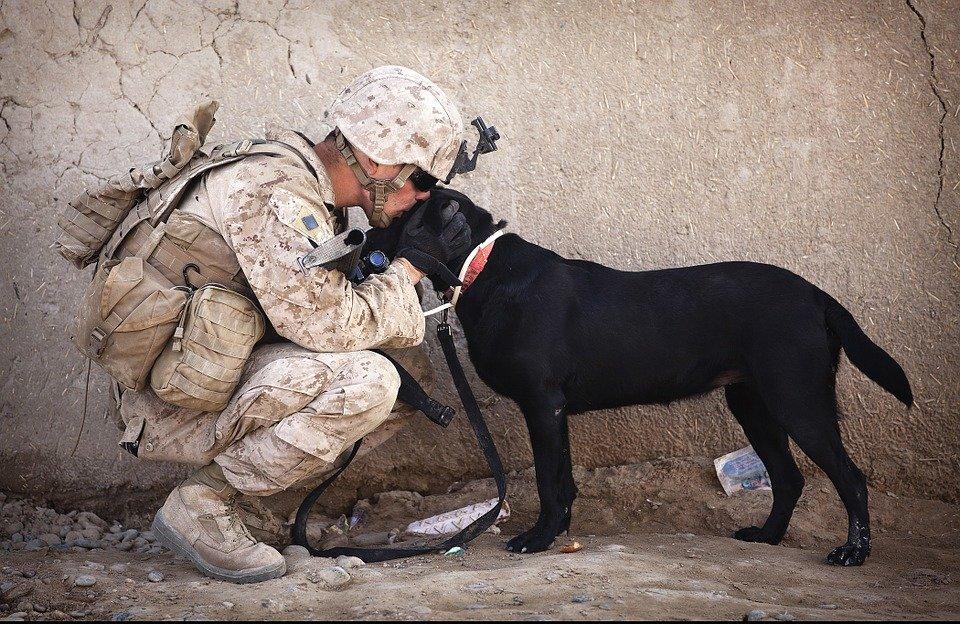 Militare Italiano con cane