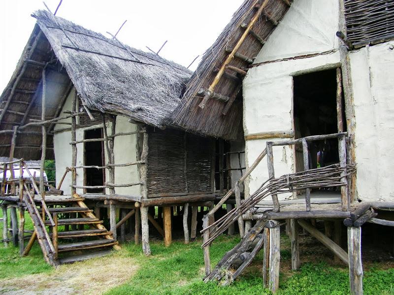 musei - Parco archeologico e museo all'aperto della Terramara di Montale