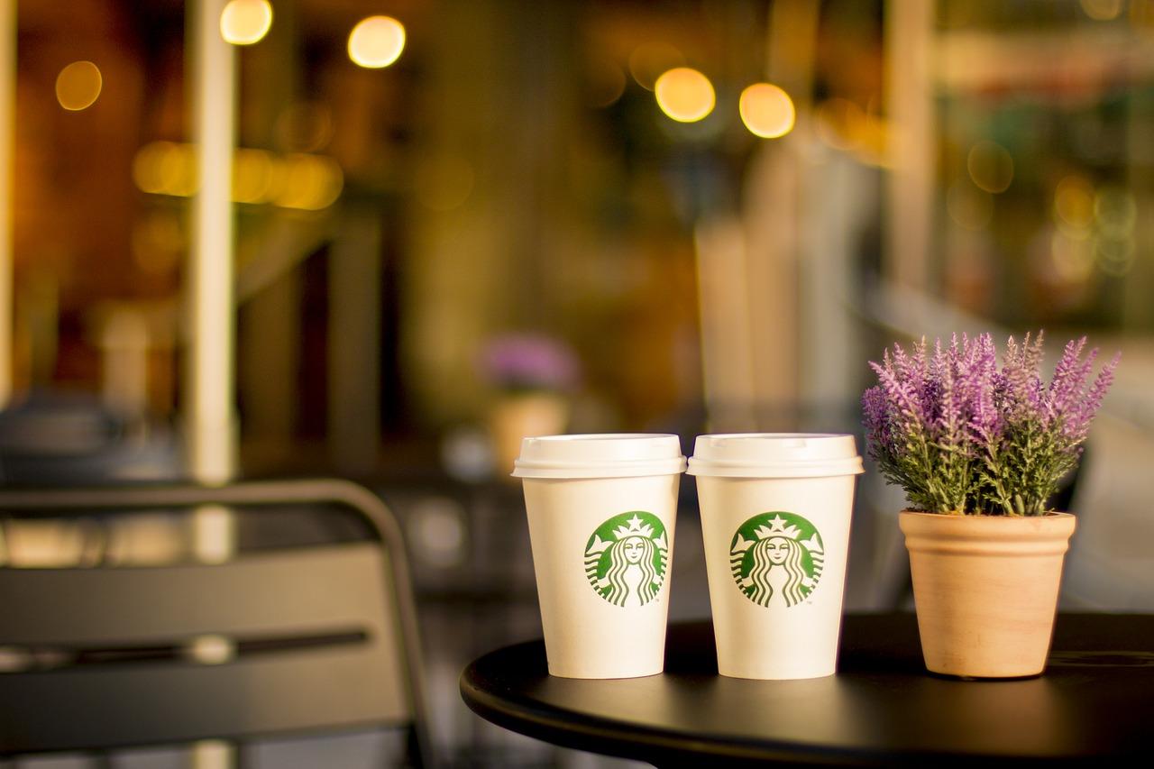 due caffè starbucks con pianta sul tavolino