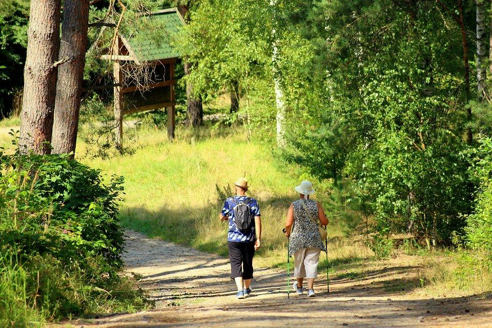 Un cammino da percorrere a piedi - A path to be traveled on foot