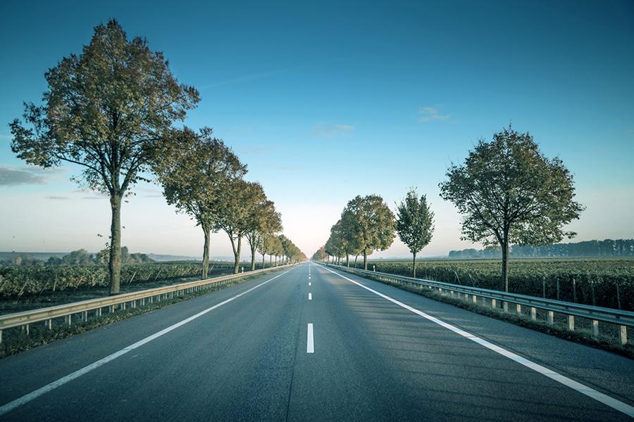 cavaliere - una strada asfaltata - knight - an asphalt road