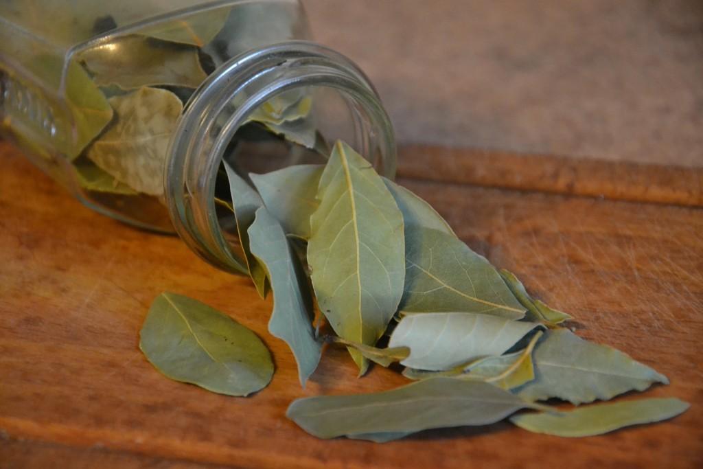 Amaro Rupens, foglie di alloro.