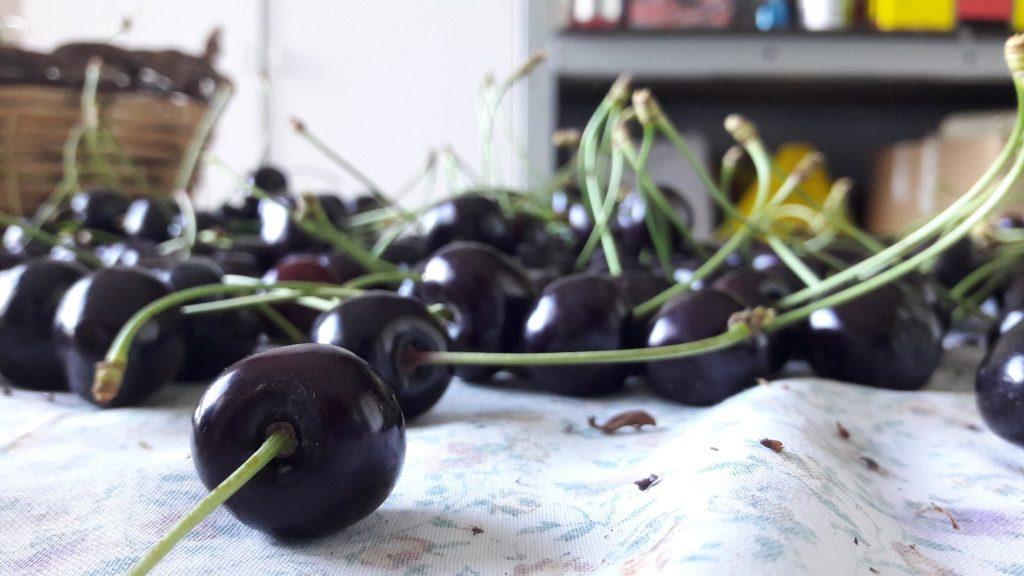 Le ciliegie di Vignola