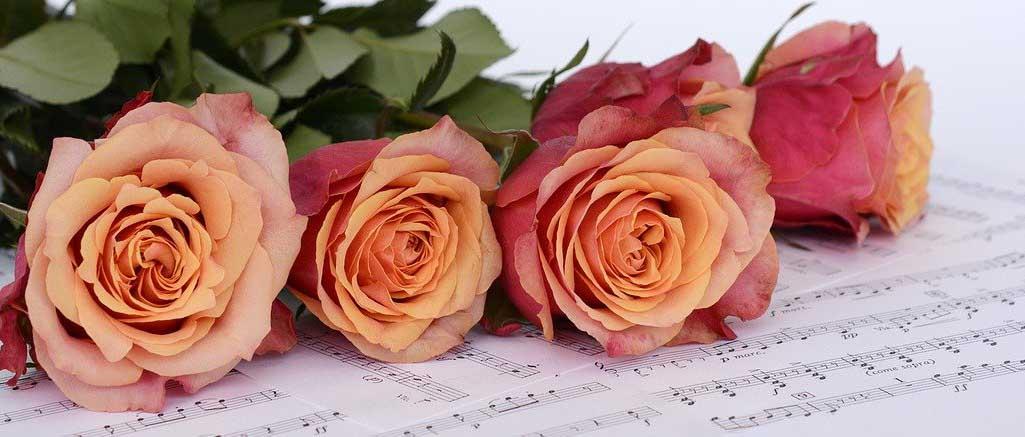 tre rose su uno spartito con le note di canzoni d'amore