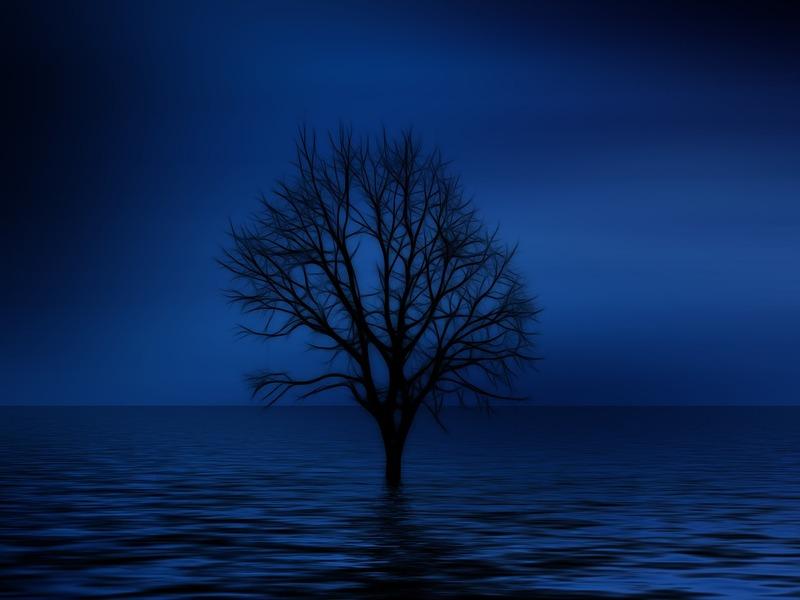 Il tema dell'albero in psicoanalisi