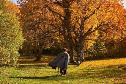 Contea Gentile - Villaggio Hobbit