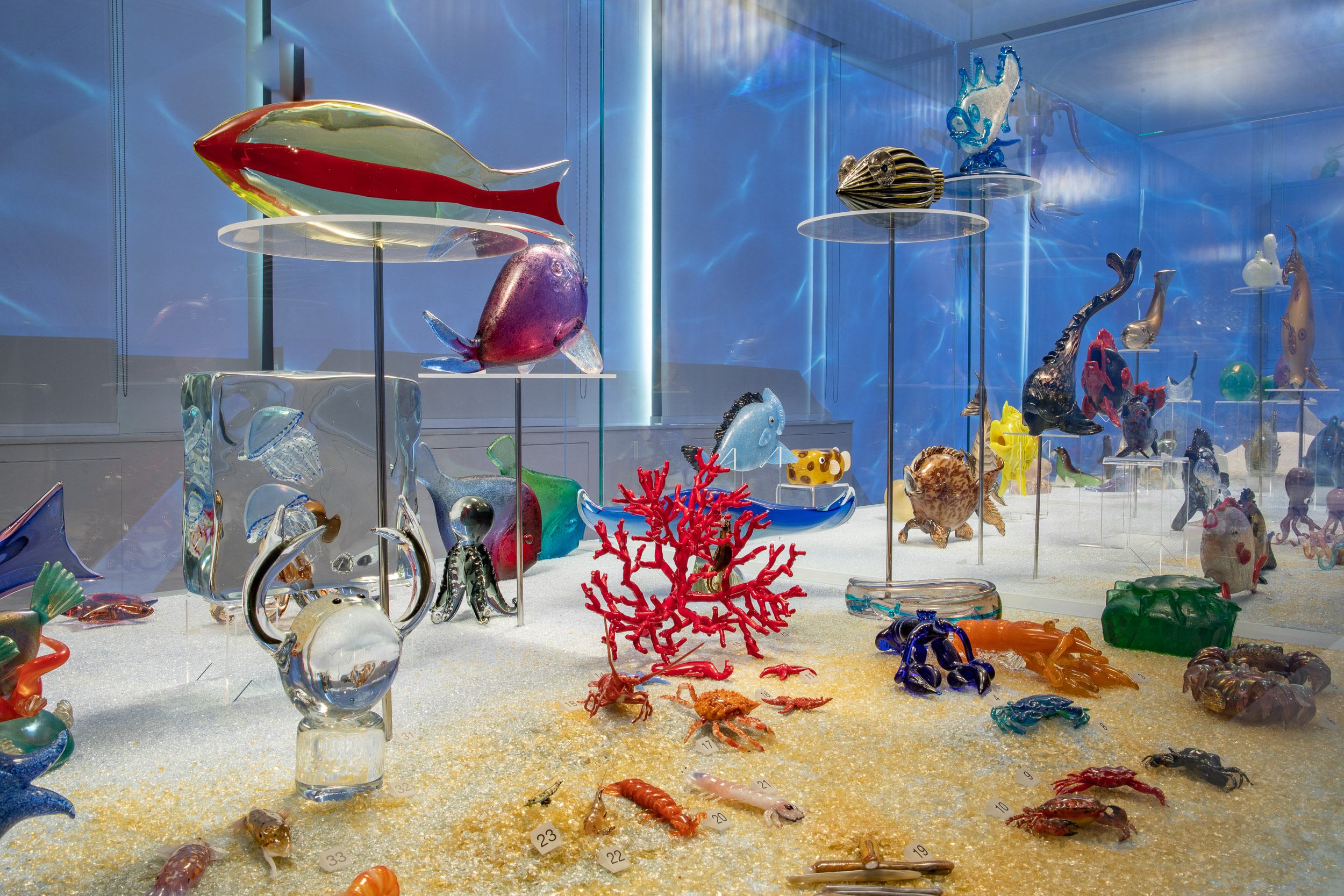 Arca di vetro animali marini