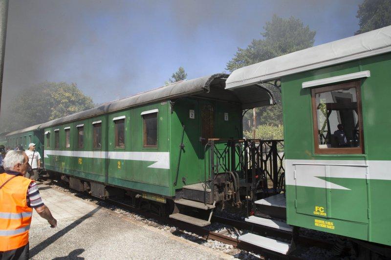 Treno della Sila, verde-giallo