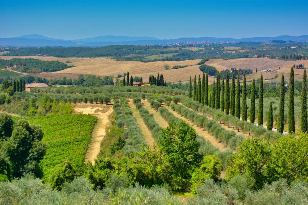 Venezia, la Sicilia e la Toscana conquistano il Time - Le colline toscane