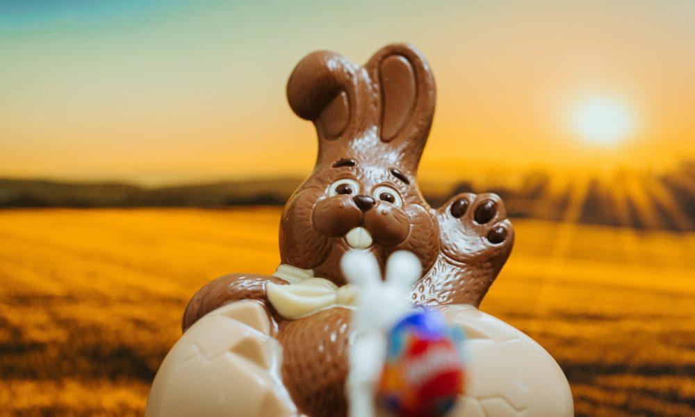 Conejo de Pascuas - Conejo de chocolate