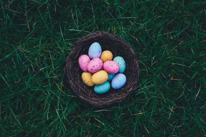 Conejo de Pascuas - Huevos