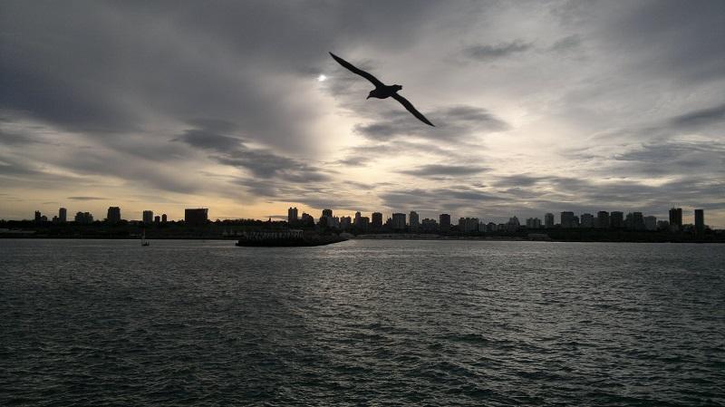 Puerto de Mar del Plata - Puerto Visto Desde El Mar
