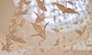 Origami - Paper Cranes. Photocredit David Yu.