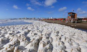 Espuma de mar - Espuma en la playa.
