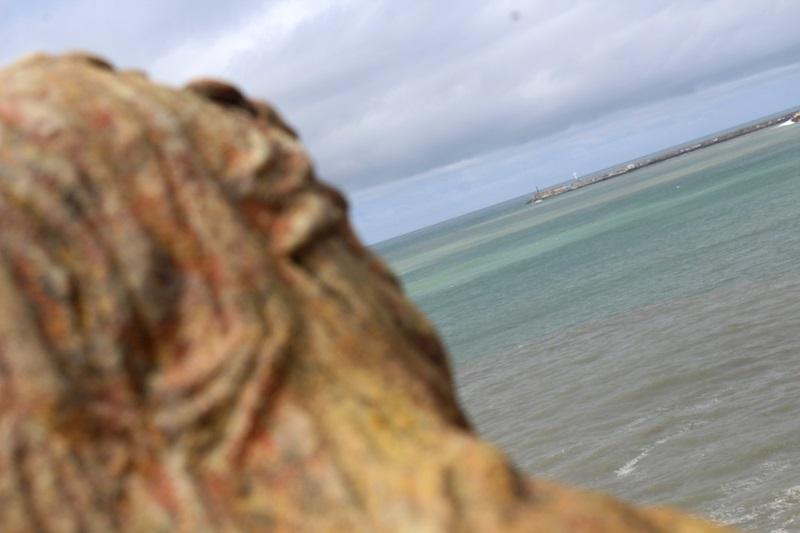 Escultura - Detalle De La Escultura.