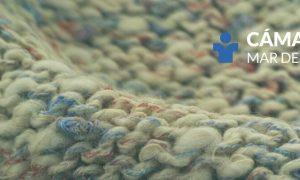 Camara Textil - Mar Del Plata Logo