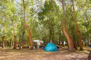 Acampar - Camping.