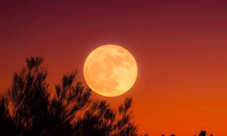 lobizón - Luna Llena