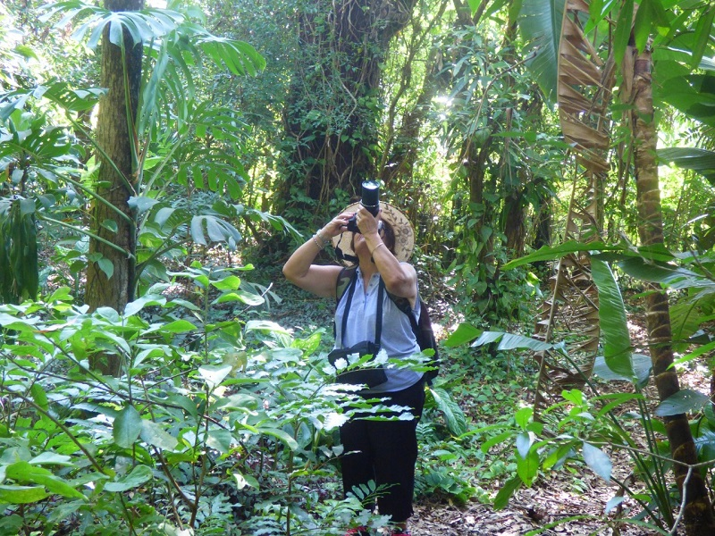 Sitios - Birdwatching