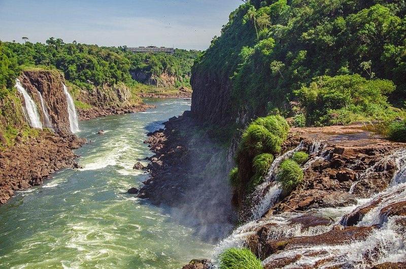 Iguazú - Vegetación
