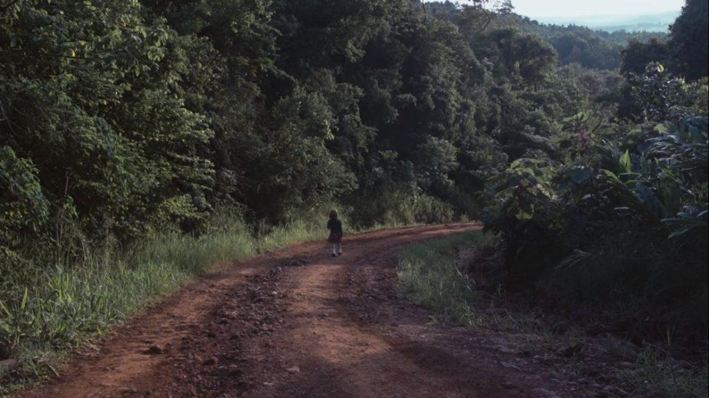 documentales - Caminos