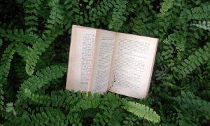 Autor misionero - La Naturaleza Envuelve Al Libro