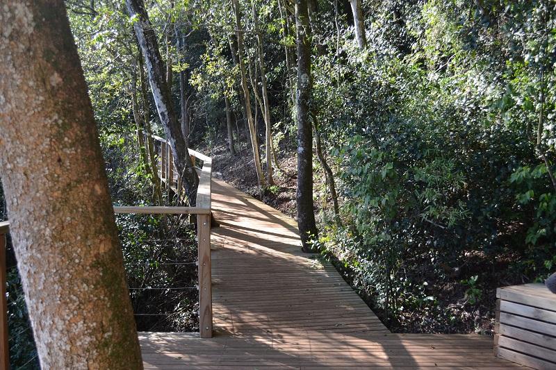 Salto - Pasarela Del Parque
