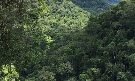 Salto Encantado - Vista Al Valle Del Cuña Piru