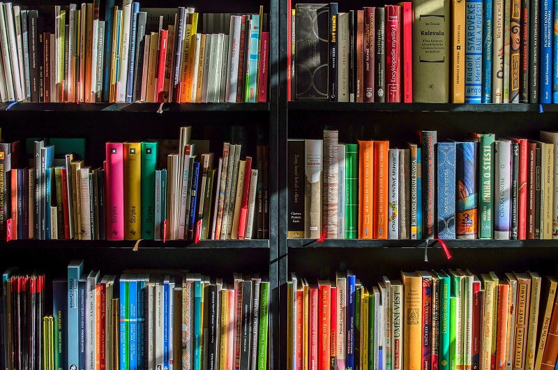 Fabio Morabito - biblioteca