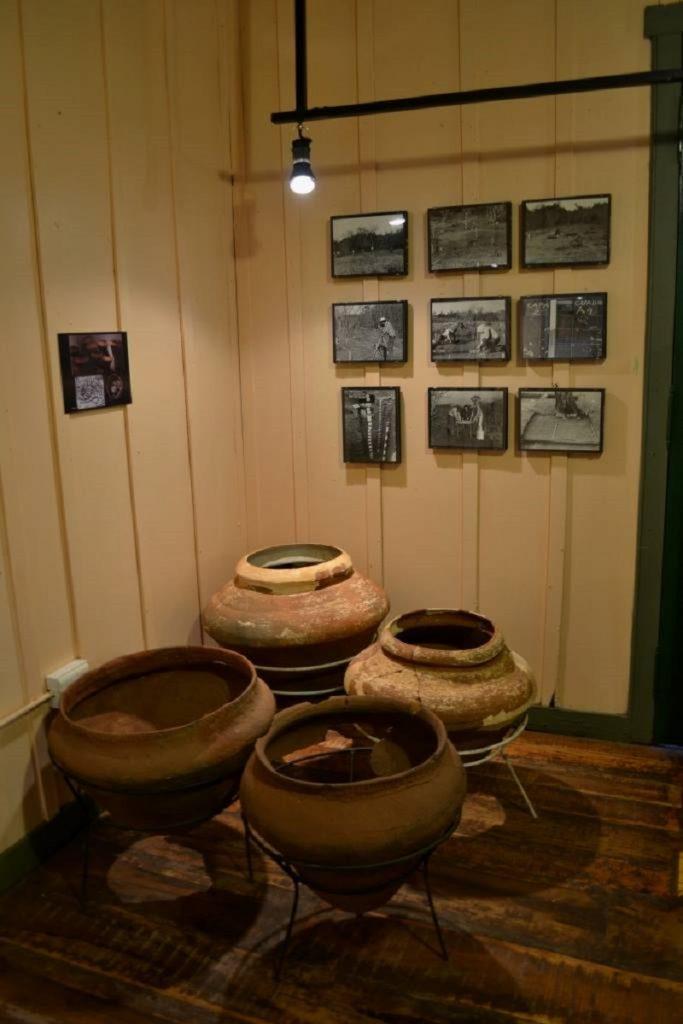 prehistoria - Vasijas
