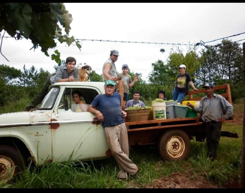 campo ramón - vino