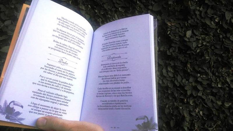 poesía - Versos