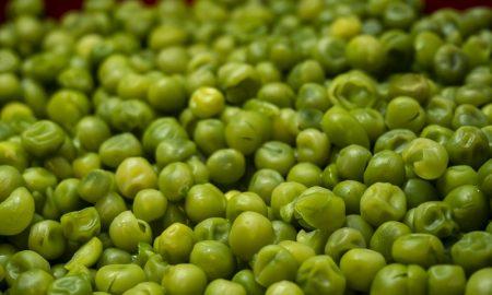 Arveja - verdes