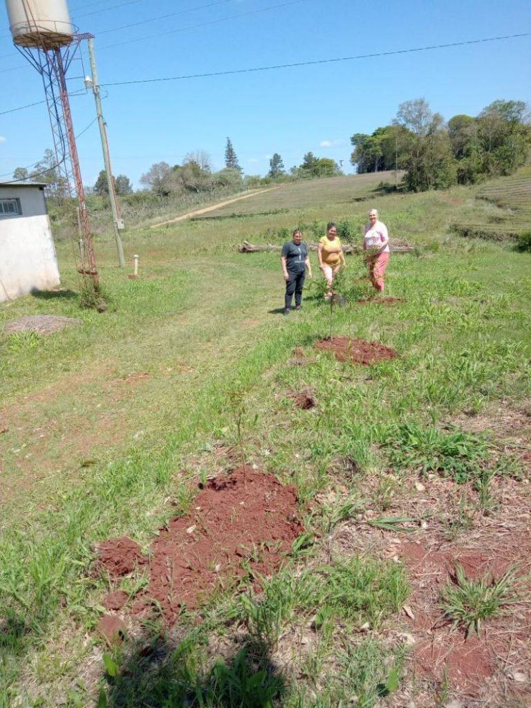vivero - La Importancia De Plantar árboles Nativos