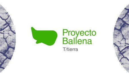 Proyecto - Ballena