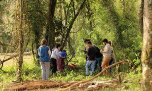 empleo verde - Trabajo En El Monte