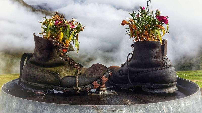 acciones - Zapatos