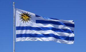 Constitución - Bandera Uruguaya