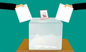 elecciones de comites - Urna De Votacion