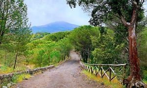 Panorama Monti Rossi Con Vista Etna