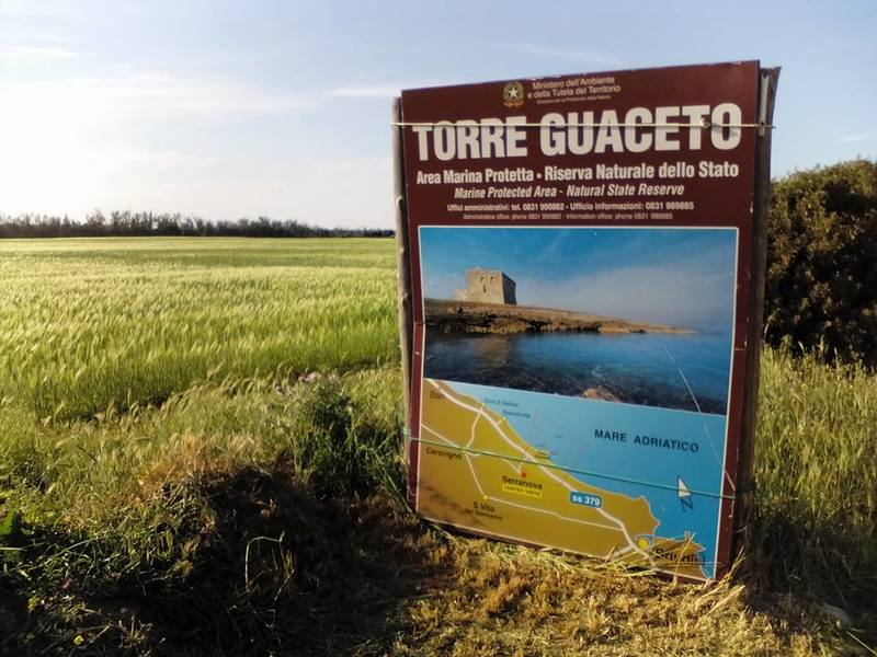 Torre Guaceto Insegna E Info