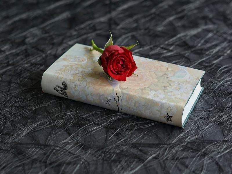 Quaderni Di Poesia