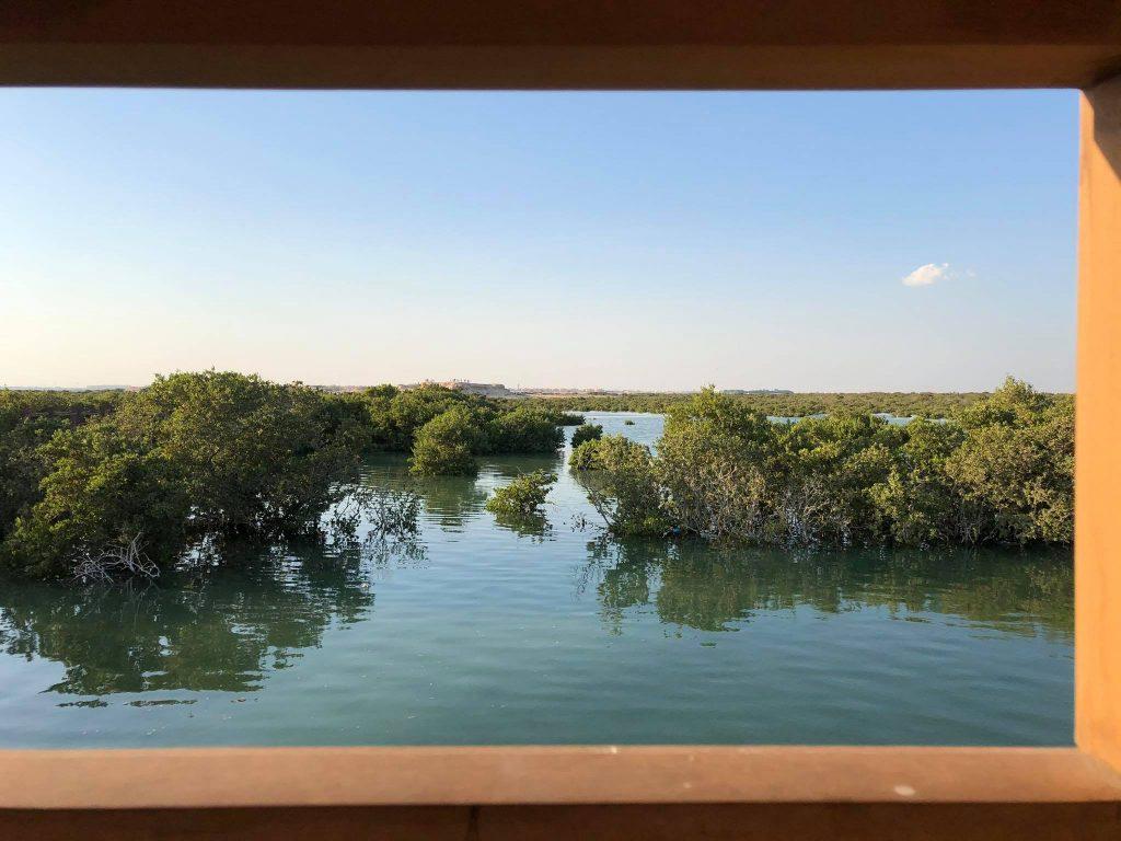 Mangrovie A Purple Island