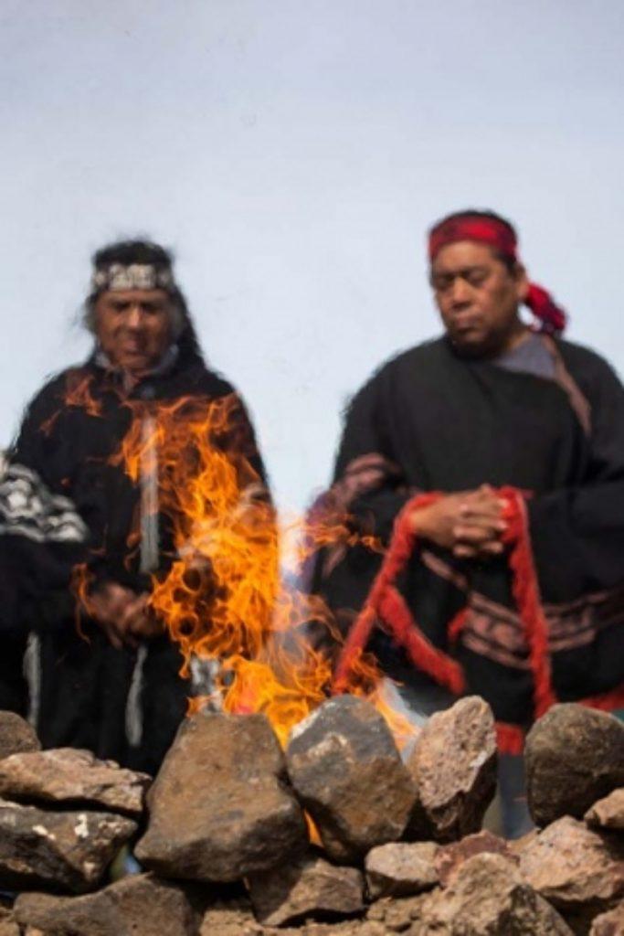 La Cosmovision Mapuche Ve Al Condor Andino Como Un Animal Sagrado