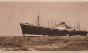 Inmigrantes - Transatlántico siglo XX