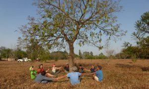 Fundación Foresar - Amor por La Naturaleza