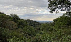 yunga - Vista Cerro San Javier